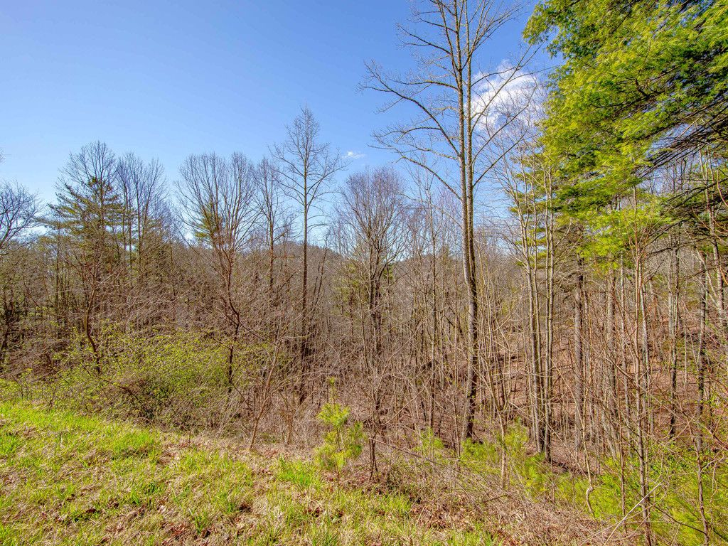 243 Starling Pass #108 in Asheville, North Carolina 28804 - MLS# 3368252