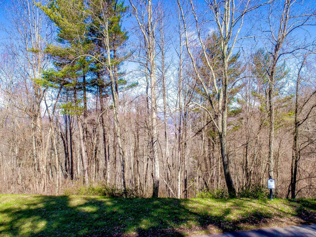 Lot 28 Katies Ridge Drive #28 in Asheville, North Carolina 28804 - MLS# 3368269