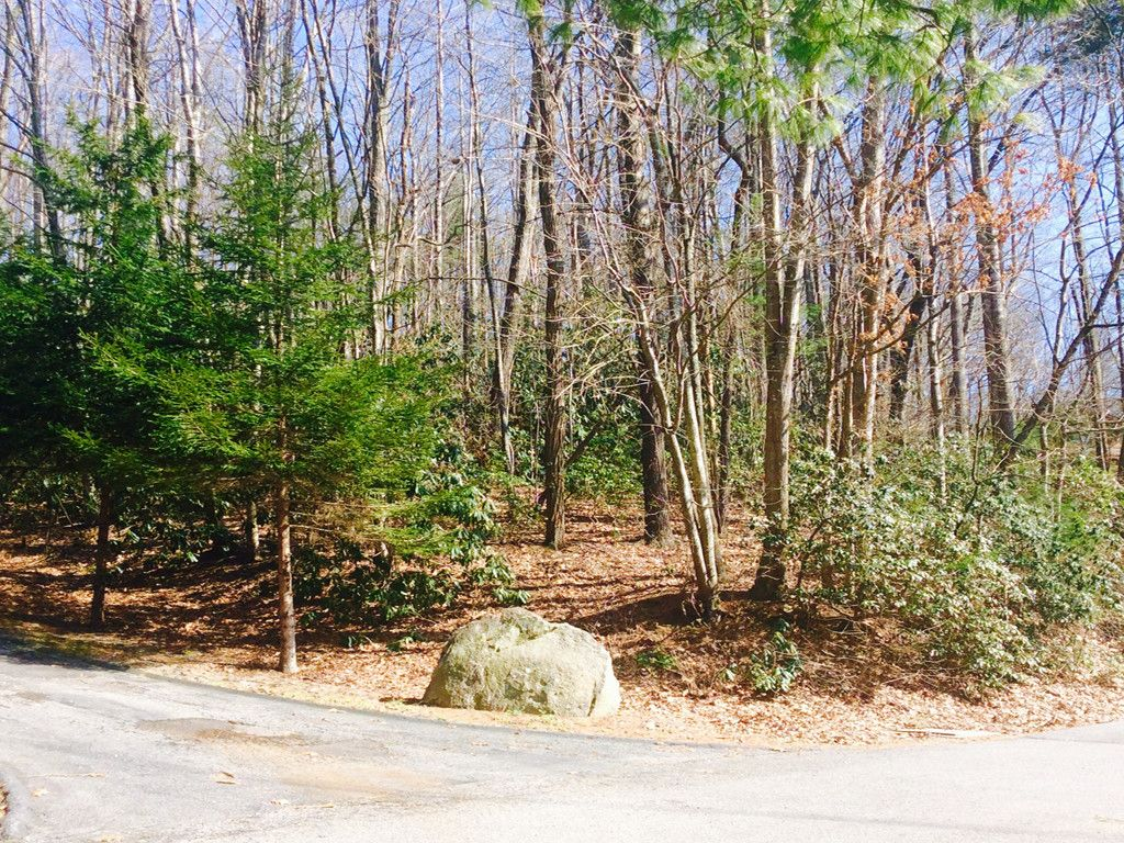 Lot 3 Kindy Forest Drive in Hendersonville, North Carolina 28739 - MLS# 3368319