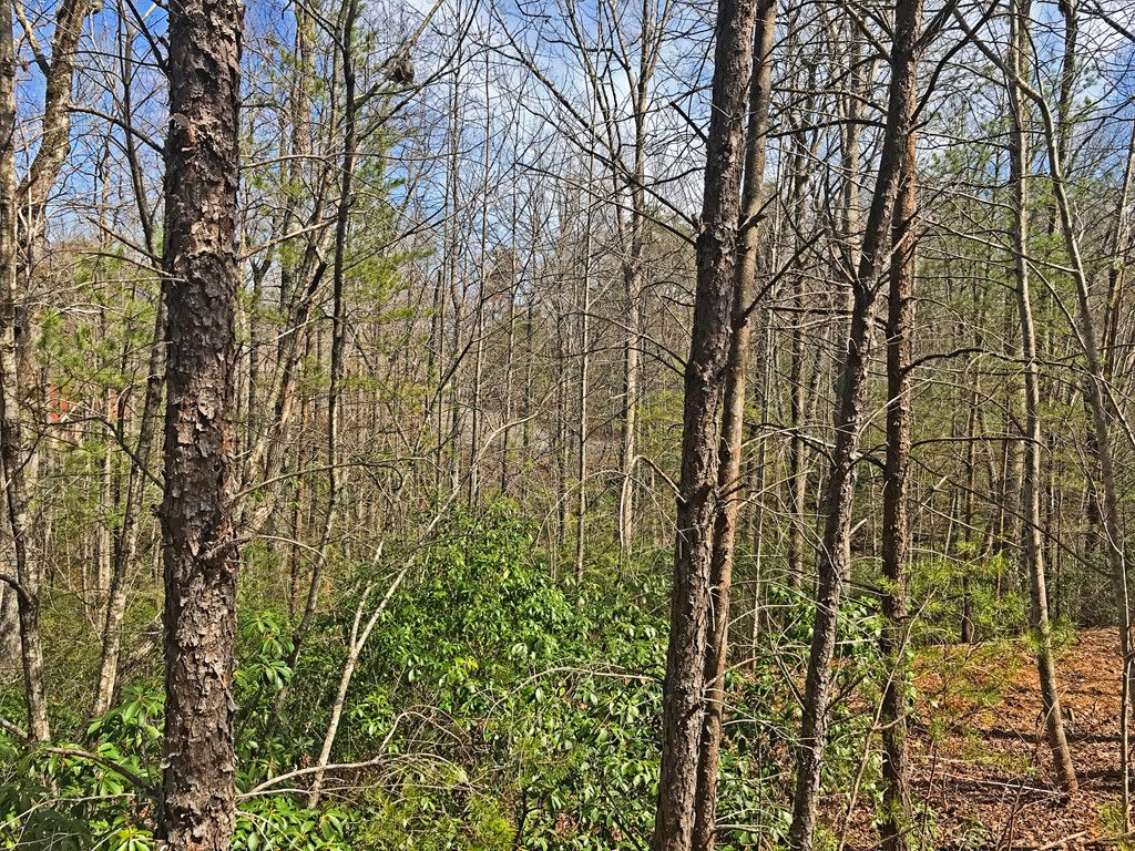 Lot 61 Lakewood Drive in Lake Lure, North Carolina 28746 - MLS# 3369601