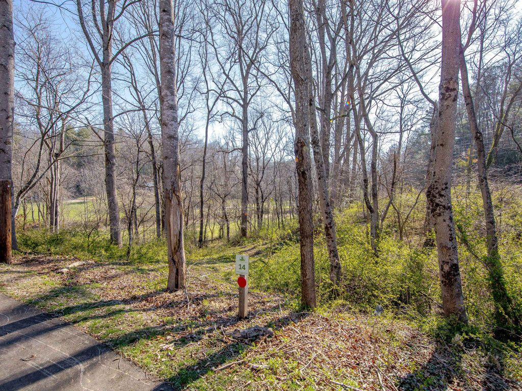 3 Wandering Oaks Lane in Asheville, North Carolina 28805 - MLS# 3369435