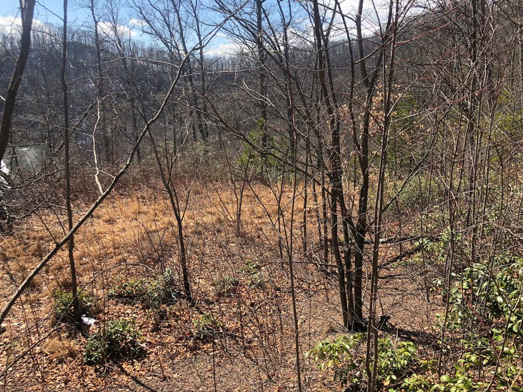 194 Stable Lane in Maggie Valley, North Carolina 28751 - MLS# 3372902