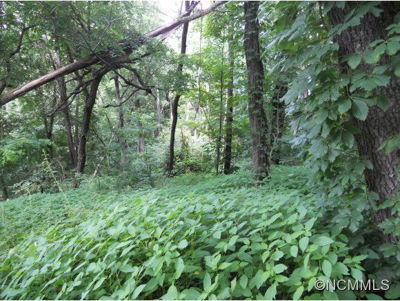 67 Twisted Trail #Lot 67 in Waynesville, North Carolina 28786 - MLS# 483974