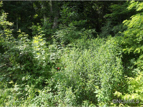87 Canyon Drive #Lot 87 in Waynesville, North Carolina 28786 - MLS# 483976