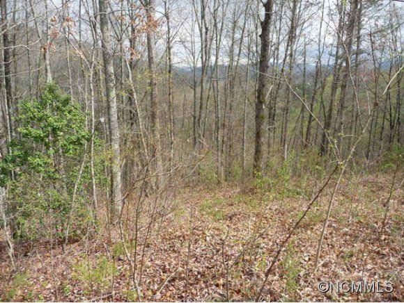 12 Fullwood Lane #12 in Dillsboro, North Carolina 28725 - MLS# 544269