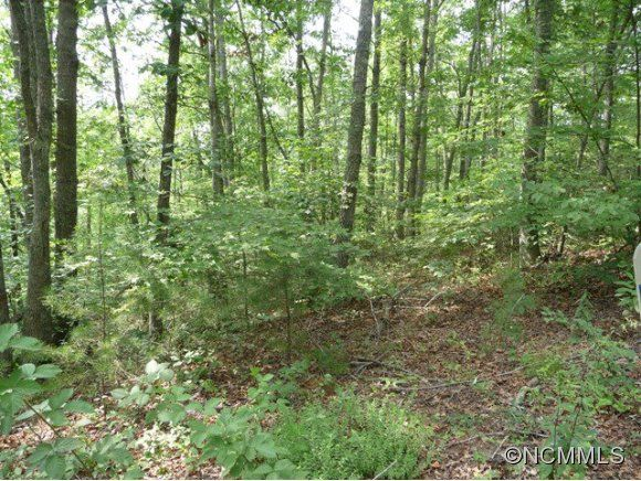 2 Fullwood Lane #2 in Dillsboro, North Carolina 28725 - MLS# 544271