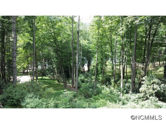 Image 17 for 897 Woods Mountain Trail in Cullowhee, North Carolina 28723 - MLS# 547888