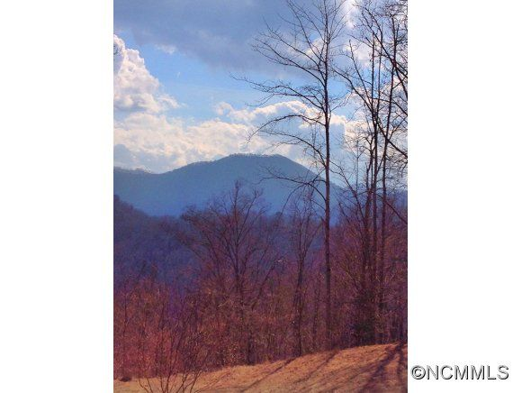 0 Wild Bird Drive in Sylva, North Carolina 28779 - MLS# 559467