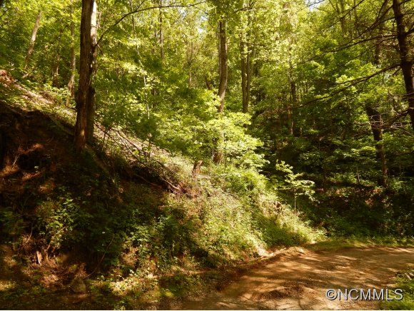 00 Vireo Lane in Waynesville, North Carolina 28786 - MLS# 562303