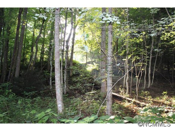 Image 1 for Lot 48 Off Boys Camp Road #48 in Lake Lure, North Carolina 28746 - MLS# 565904