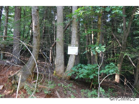 Image 2 for Lot 48 Off Boys Camp Road #48 in Lake Lure, North Carolina 28746 - MLS# 565904