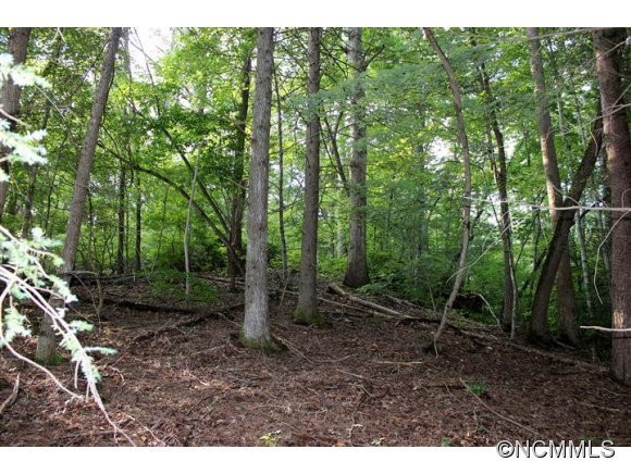 Image 3 for Lot 48 Off Boys Camp Road #48 in Lake Lure, North Carolina 28746 - MLS# 565904