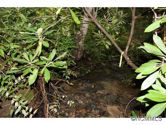Image 4 for Lot 48 Off Boys Camp Road #48 in Lake Lure, North Carolina 28746 - MLS# 565904