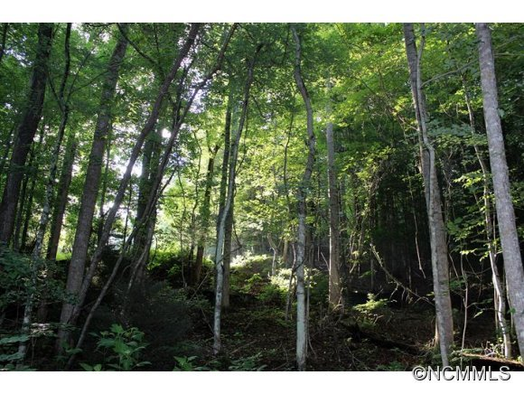 Image 5 for Lot 48 Off Boys Camp Road #48 in Lake Lure, North Carolina 28746 - MLS# 565904