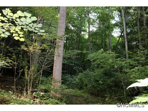 Image 7 for Lot 48 Off Boys Camp Road #48 in Lake Lure, North Carolina 28746 - MLS# 565904