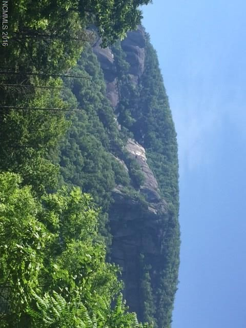Lot 1 Cascada Vista Drive in Chimney Rock, North Carolina 28720 - MLS# 3180412