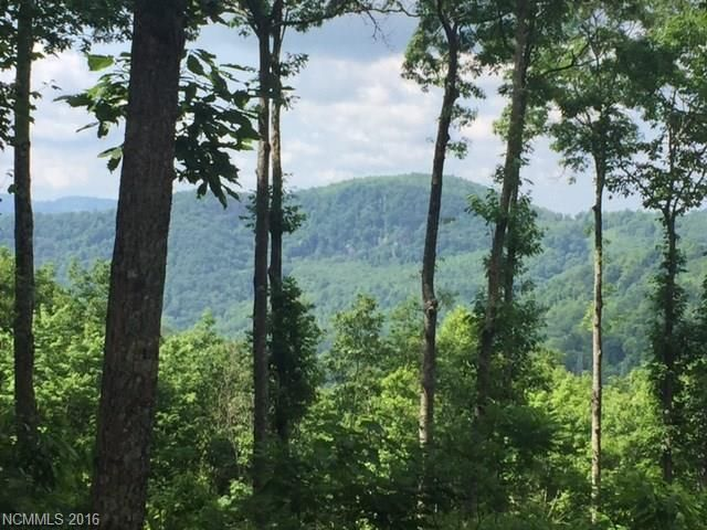 12.39 Acres Valley View Drive #1,2,3 in Bat Cave, North Carolina 28710 - MLS# 3182987