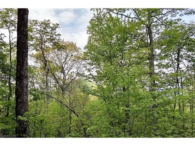 761 Fern Gap Road #153 in Sylva, North Carolina 28779 - MLS# 3188615