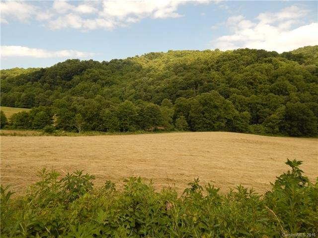 Image 8 for 0 209 Highway in Hot Springs, North Carolina 28743 - MLS# 3190564