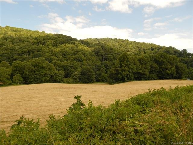 Image 9 for 0 209 Highway in Hot Springs, North Carolina 28743 - MLS# 3190564