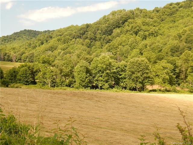 Image 15 for 0 209 Highway in Hot Springs, North Carolina 28743 - MLS# 3190564