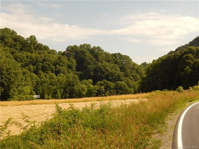 Image 16 for 0 209 Highway in Hot Springs, North Carolina 28743 - MLS# 3190564
