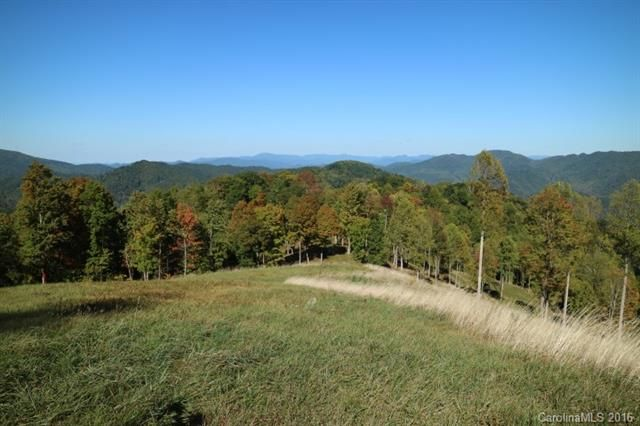 00 Meadow Fork Road in Hot Springs, North Carolina 28743 - MLS# 3221579