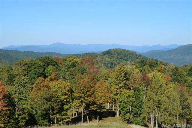 Image 5 for 00 Meadow Fork Road in Hot Springs, North Carolina 28743 - MLS# 3221579