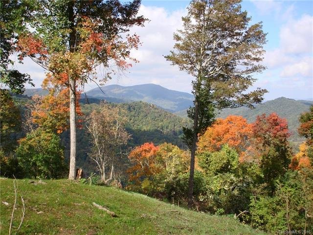 Image 16 for 00 Meadow Fork Road in Hot Springs, North Carolina 28743 - MLS# 3221579