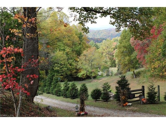 Image 3 for 500 Mountain View Road in Hot Springs, North Carolina 28743 - MLS# 3223433
