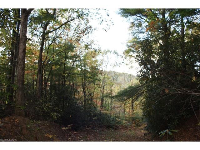 Sr #1100 Fork Creek Road in Saluda, North Carolina 28773 - MLS# 3225718