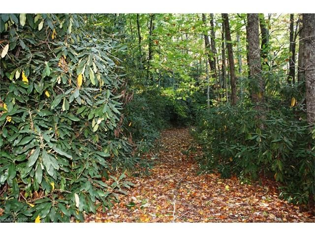 Sr #1101 Fork Creek Road in Saluda, North Carolina 28773 - MLS# 3225752