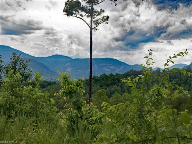 Lot #348 Deer Jump Trail in Lake Lure, North Carolina 28746 - MLS# 3289766