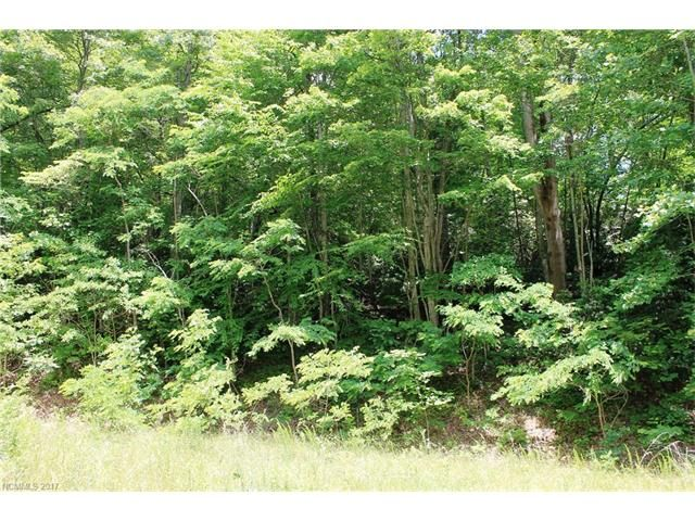 Lot #32 Rambling Trail #32 in Hendersonville, North Carolina 28739 - MLS# 3304495