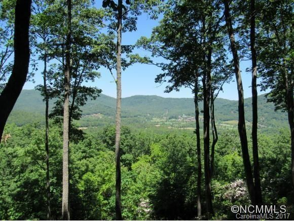 303 Secluded Hills Lane #Lot 63 in Arden, North Carolina 28704 - MLS# 3305343