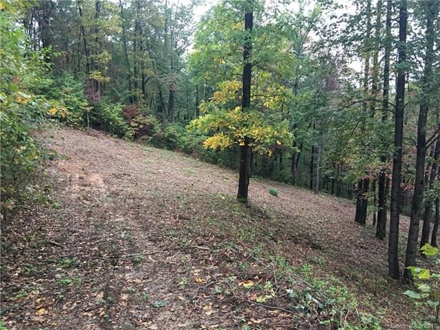 100 Whiteside Trail #44 & 45 in Hendersonville, North Carolina 28792 - MLS# 3328535