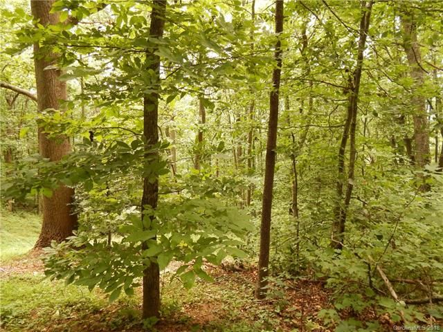 1459 Ned Cove Road in Waynesville, North Carolina 28785 - MLS# 3354514