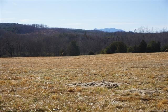 1714 Union Road in Rutherfordton, North Carolina 28139 - MLS# 3359080