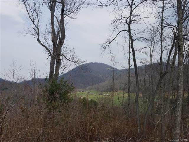 3091 Hyder Mountain Road in Clyde, North Carolina 28721 - MLS# 3368124