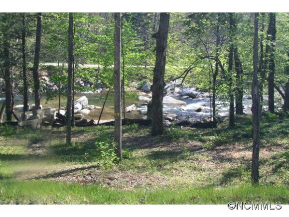 125 &137 Fall Creek Drive #5,6 in Chimney Rock, North Carolina 28720 - MLS# 574737