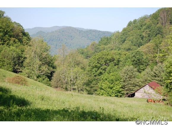 Image 11 for 999 Baltimore Branch Rd. in Hot Springs, North Carolina 28743 - MLS# 580813