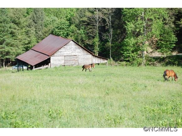 Image 12 for 999 Baltimore Branch Rd. in Hot Springs, North Carolina 28743 - MLS# 580813