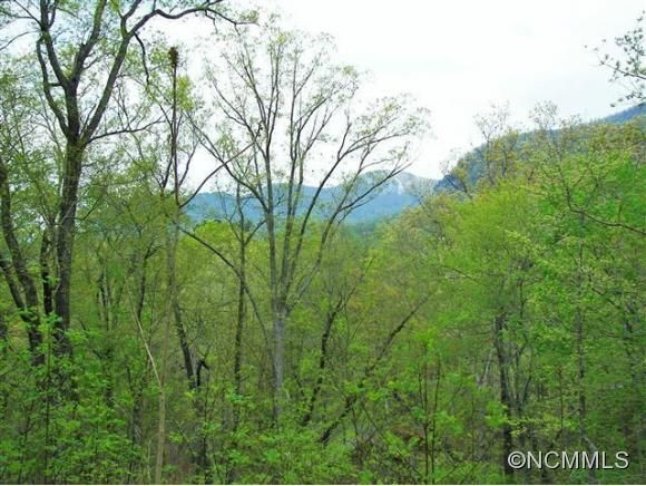 1309 1309 Buffalo Shoals Rd. #3 & 4 in Lake Lure, North Carolina 28746 - MLS# 584058