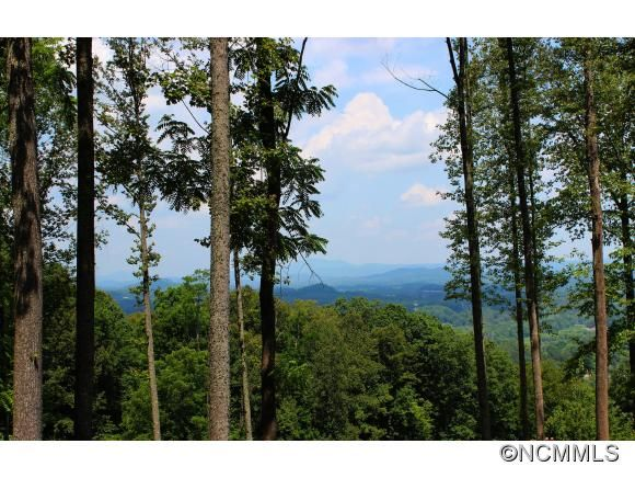 C8 Rock Cliff Way in Hendersonville, North Carolina 28791 - MLS# 586781
