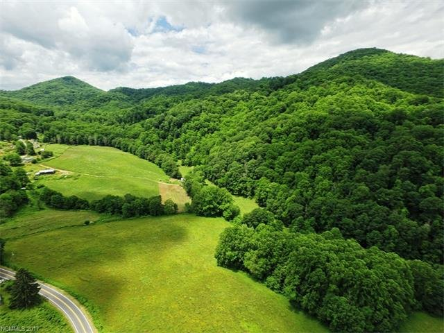 Image 3 for 00 Hwy. 209 in Hot Springs, North Carolina 28743 - MLS# 589837