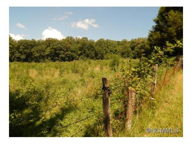 Image 20 for 00 Hwy. 209 in Hot Springs, North Carolina 28743 - MLS# 589837
