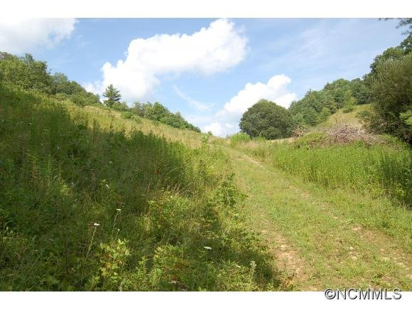 Image 3 for 00 West Road in Hot Springs, North Carolina 28743 - MLS# 590068