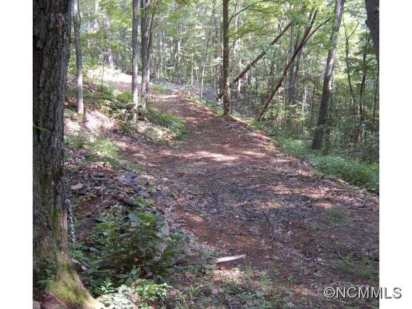 Image 4 for 00 West Road in Hot Springs, North Carolina 28743 - MLS# 590068