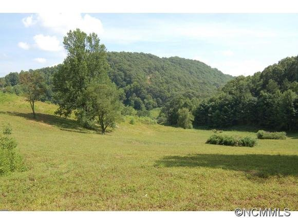 Image 5 for 00 West Road in Hot Springs, North Carolina 28743 - MLS# 590068