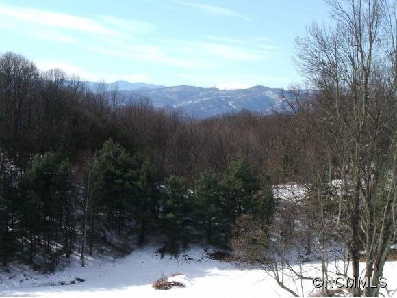 Image 11 for 00 West Road in Hot Springs, North Carolina 28743 - MLS# 590068